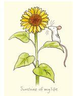 Greeting Card - Sunshine of My Life