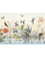 Boxed Notecards - Bird Garden