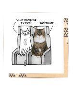 Greeting Card - Photoshop Cat