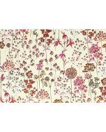 Boxed Notecards - Wildflower Meadow