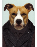 Dog Portrait Card