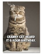Birthday Card - Cranky Cat