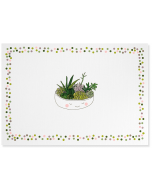 Boxed Notecards - Succulents