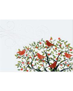 Christmas Cards (Box of 20) - Festive Birds