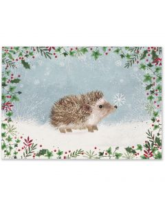 Happy Hedgehog Boxed Cards
