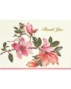 Magnolia Thank You Notecard Box