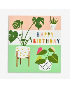 Birthday Card - Pot Plants