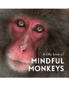 A little book of Mindful Monkeys