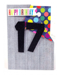 '17 Happy Birthday' Card