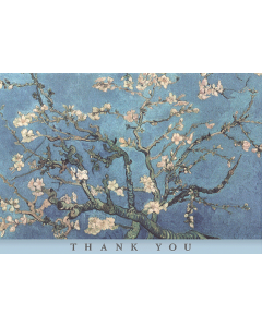 Boxed Thank You Cards - Almond Blossom