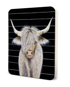'Beau' the Bull