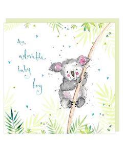 Baby Boy - Koala on a branch