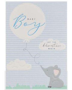 Baby Boy - 'Let the adventure begin'
