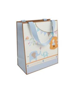 Special Delivery Boy Medium Gift Bag