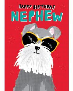 Nephew Birthday - Dog in sunglasses