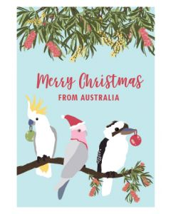 Australian Christmas birds - box of 8 Christmas cards