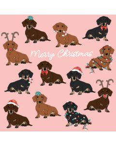 Boxed Christmas cards - Christmas Dachshund (10 cards)