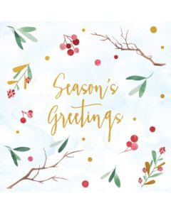 Boxed Christmas Cards - Nature Greetings (10 cards)