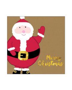 Boxed Christmas Cards - Festive Santa (10 cards)