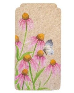 Echinacea flowers with butterfly gift tag