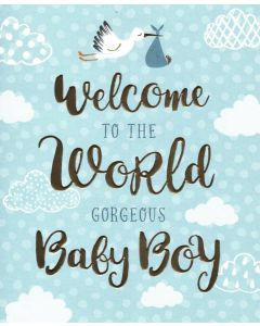 Baby BOY Card- Welcome to the World