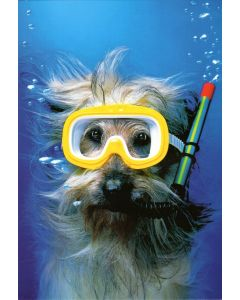 THANK YOU Card - Snorkeling Dog