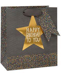 Gift Bag (Medium) - Birthday Star on Grey
