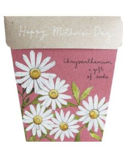 ON SALE - Mother's Day Chrysanthemum Card & Gift of Seeds