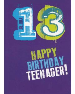 """You're 13 Happy Birthday Teenager!"" Greeting Card"