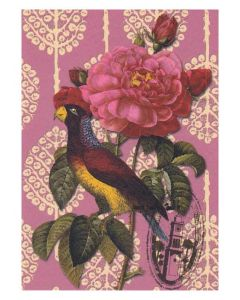 Parrot & Rose Greeting Card by Prey