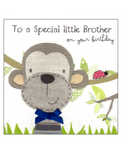 'To a Special Little Brother' Card
