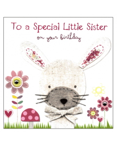 'To a Special Little Sister' Card