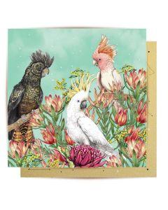 Greeting Card - Cockatoos of Australia