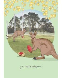 Pies at the Footy - Kangaroos