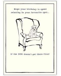 BIRTHDAY - Dog on chair