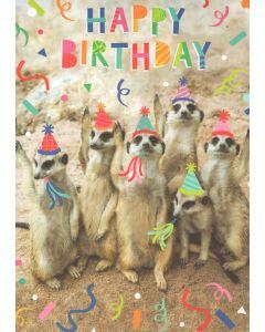 BIG Birthday Card - Party Meerkats