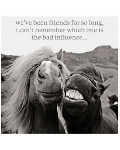 Friends - Bad Influence