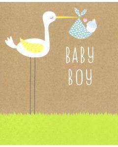 Baby BOY - Stork & Baby Bundle