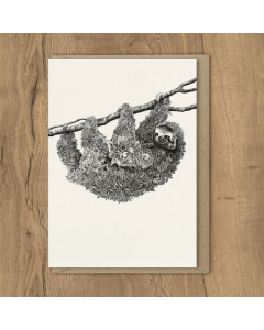 Brown-Throated Sloth Card