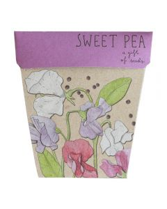 Sweet Pea - Card & Gift of Seeds