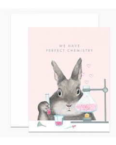 We have perfect chemistry bunny