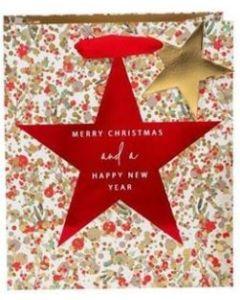 Star Gift Bag & Gift Tag